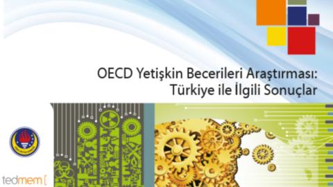 tedmem – OECD Yetişkin Becerileri Araştırması: Türkiye ile İlgili Sonuçlar