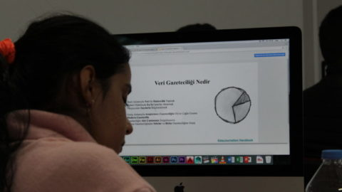 Medya Profesyonellerinin Veri Gazeteciliği Algısı Üzerine Bir Araştırma