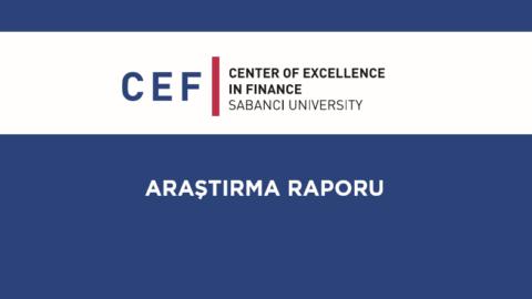 CEF – Türkiye'deki Yatırım Araçlarının Karşılaştırmalı Performans Analizi